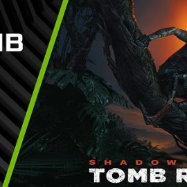 Shadow of the Tomb Raider İçin Game Ready Sürücüsü